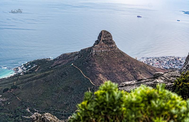 20190514-152 Cape Town Table Mtn, Lion's Head