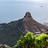 20190514-152 Cape Town Table Mtn, Lion's Head