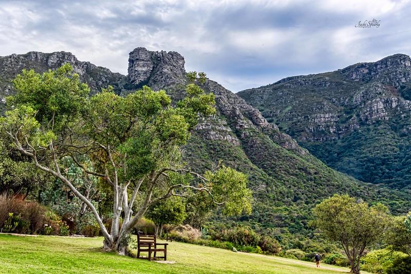 20190514-267 Cape Town Table Mtn, Gardens and Bo Koop homes-Edit topaz