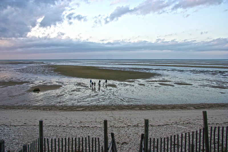 tidal flats (low tide)