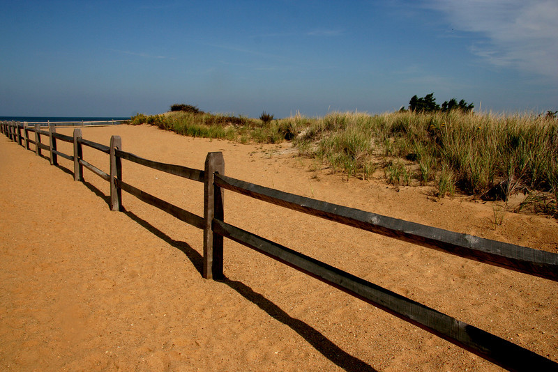 Fence, Paines Creek