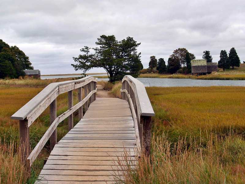 Bridge into saltmarsh.