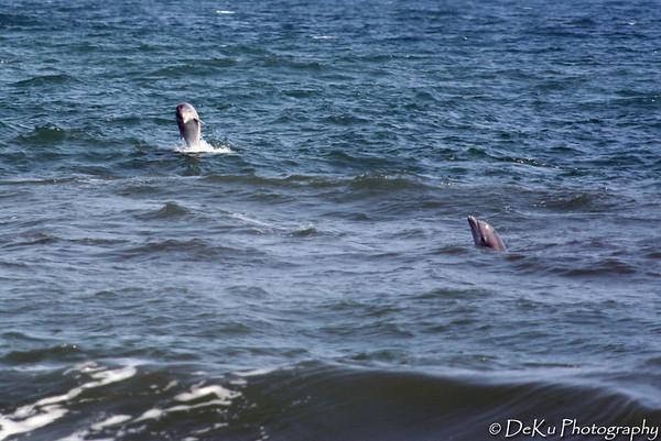 Beach-Day3(web)_0047