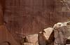Petroglyph Trail
