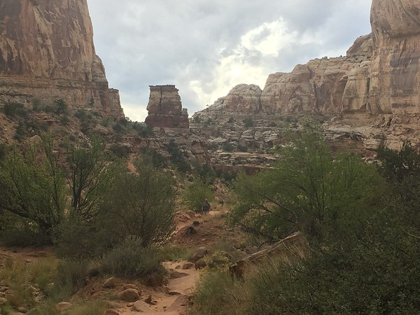 Capitol reef canyon view