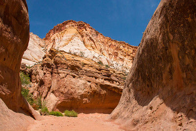 Capitol Reef National Park-Capitol Gorge Trail