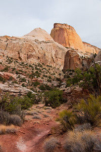 Capitol Reef National Park-Golden Throne Trail