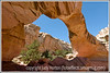 A huge arch in Capitol Reef National Park