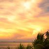 Golden Sunset 1 Lt