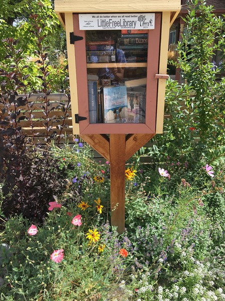 Tiny library & flowers