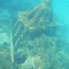 1900's Shipwreck Barbados DSCN0128_