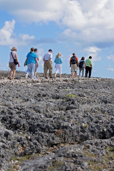 Amazing lava rock