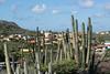 Second Stop:  Aruba
