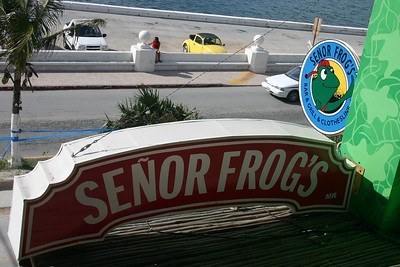 Si, Senor The view from inside Senor Frog\'s, a popular source of (weak) drinks in the Cozumel cruise terminal