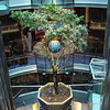 Living tree in the 11-story Centrum.