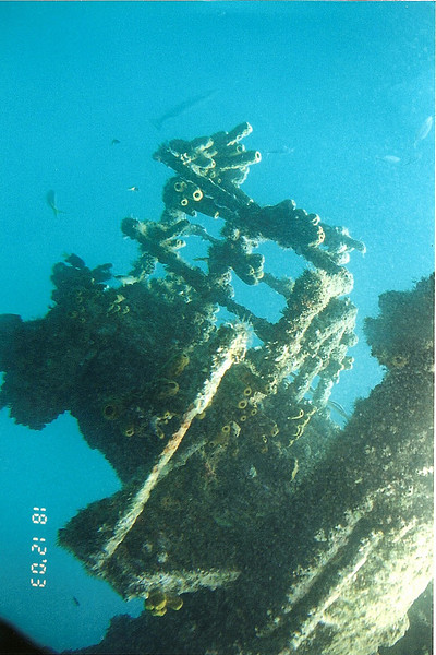 The Crow's Nest of a Dutch freighter that was intentionally scuttled off of Oranjestadt, Aruba during WW2.  Holland had fallen to the Nazis by then and her captain didn't want her falling into enemy hands and had nowhere to go.  It is now very attractive for divers and for our semisubmersible tour.  This shipwreck is the same ship in all these underwater photos.