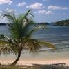 Beach scene near the reef on Antigua
