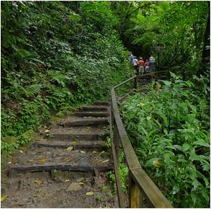 A steep climb up the trail up to Trafalgar Falls