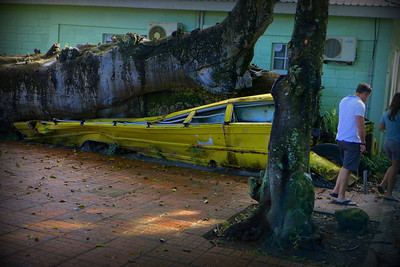 Small school bus crushed during a hurricane
