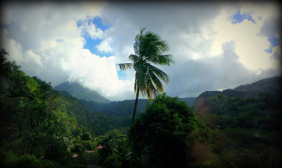 Lush valley in the highlands of Dominica