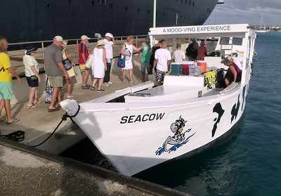 Seacow Snorkel tour boat. Great crew. Highly recommend. Go to: http://www.seacow-bonaire.com/