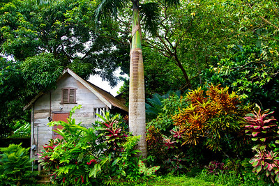 Old Traditional House in Charlottesville - Tobago, WI