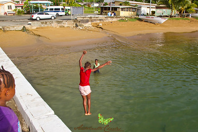 Kids jumping off Pier in the heart of Charlottesville, Tobago, WI