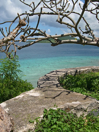 Frangipani tree casts shadows on old mill wall overlooking clear aqua Caribbean waters and Virgin Islands - St. John - U.S. Virgin Islands