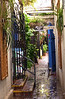 Small quaint shops, brick alleys, tropical foliage describe this tranquil shopping area in St. Thomas - U.S. Virgin Islands