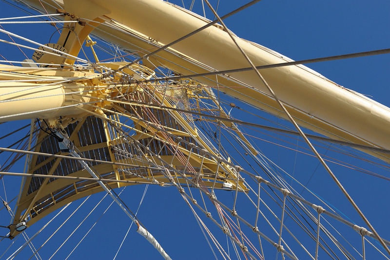 view up at one of five masts