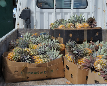 Dominica Pineapple