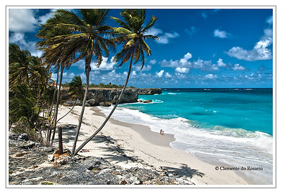File Ref: 2008-03-31-Barbados 136