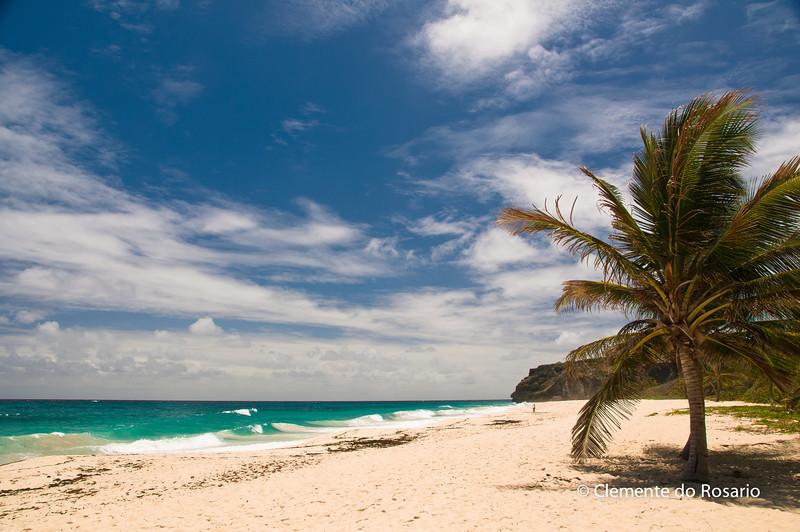 file Ref: 2008-03-31 Barbados 116