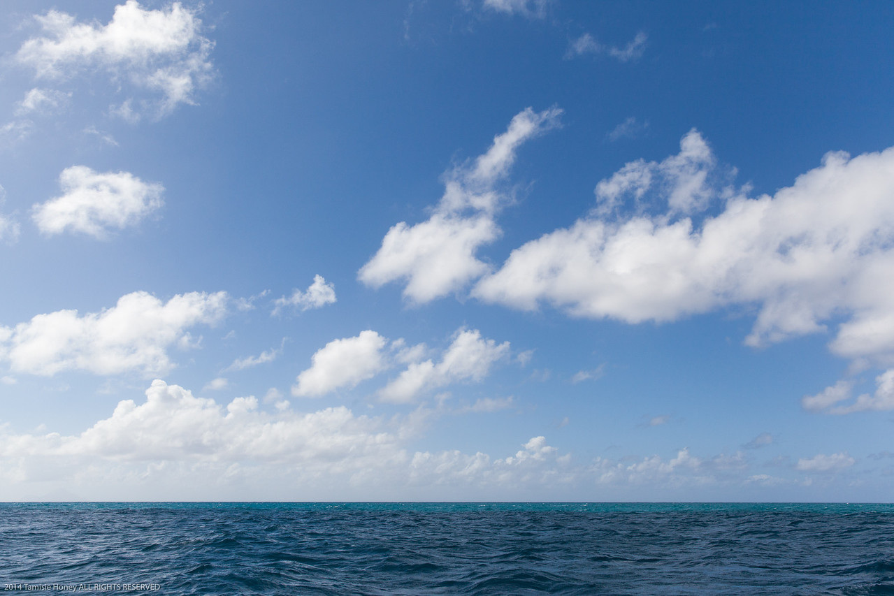 Caribbean Perfection
