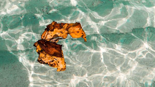 Lost on Seven Mile Beach, Grand Cayman