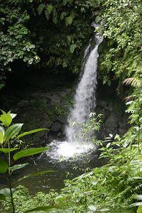 207_0746 Emerald Falls, Dominica