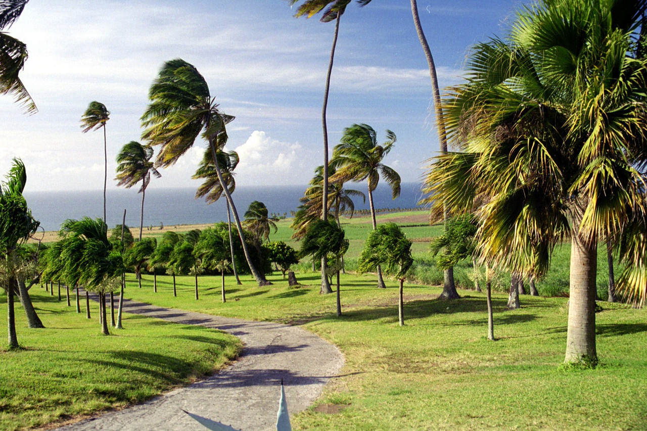 St. Kitts plantation