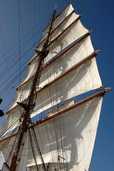 Fore mast sails out.