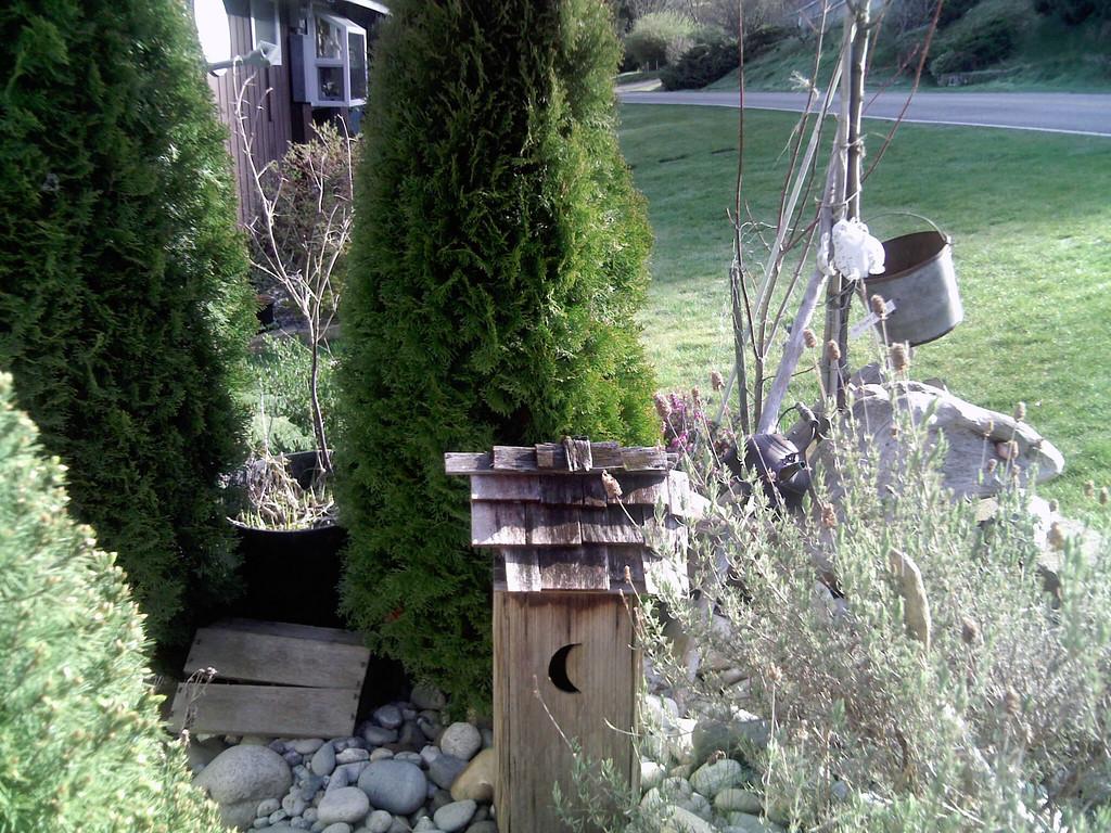 Cabin #5 Front Door Garden