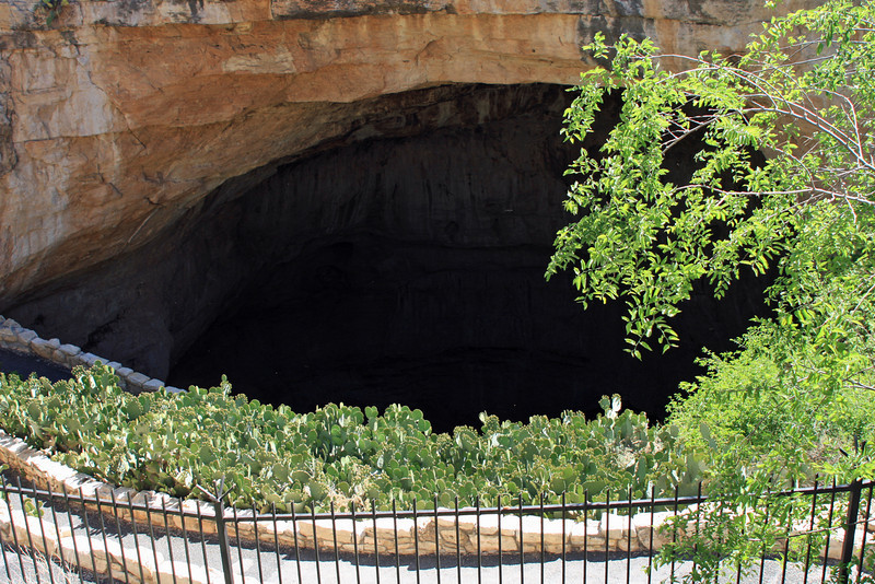 This is the entrance to the cave.
