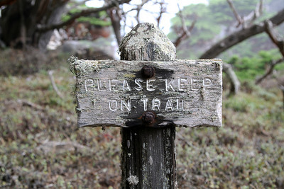 "Save the lichens, ""Please Keep On Trail"""