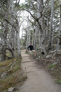 Robert amongst the cypress trees of Point Lobos State Reserve, CA.