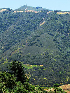 South ridge, Carmel Valley
