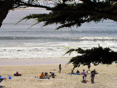 39-Carmel City Beach