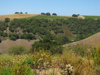 Carmel Valley and Carmel