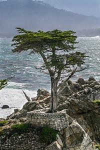Carmel/Monterey