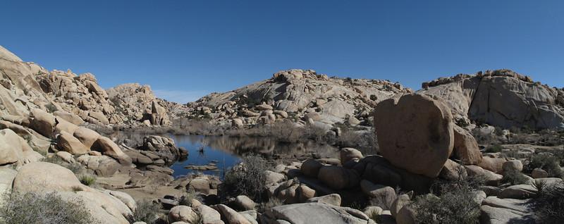 Thursday: at Barker Dam in Joshua Tree National Park