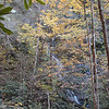Waterfall on Maple Springs Branch NC<br /> Gorges State Park