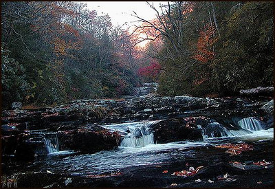 Snowbird Creek below Big Falls NC