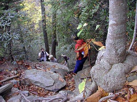Steep @$$ climb heading toward Rainbow Falls<br /> at Camp Greenville SC